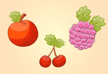 Obst Kupferstich