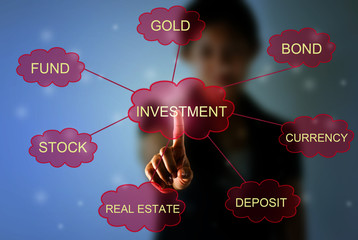 Business woman pointing investment concept