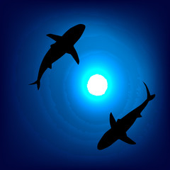 A pair of sharks in the depths of the sea