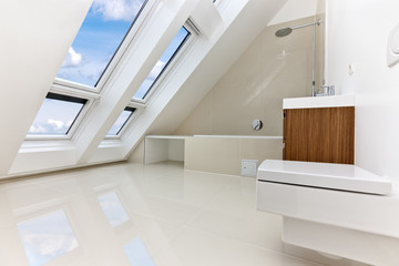 Sunlit modern bathroom of Contemporary apartment