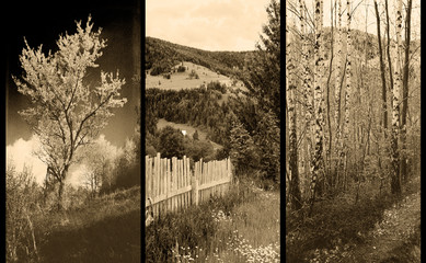 old traditional photography - Rural views, triptych Wall mural