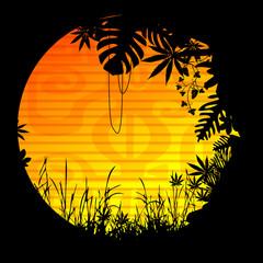 soleil motif végétation forêt