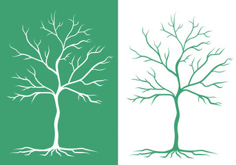 two silhouettes of trees