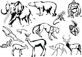 collection of animals sketches