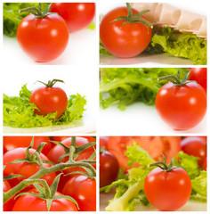 colección de tomates frescos