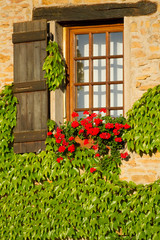 Beautiful window in  France .