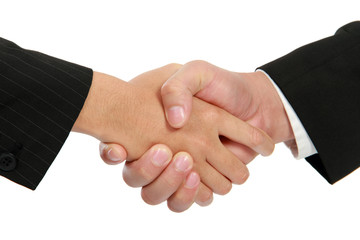 Hand shake between a businessman and a businesswoman