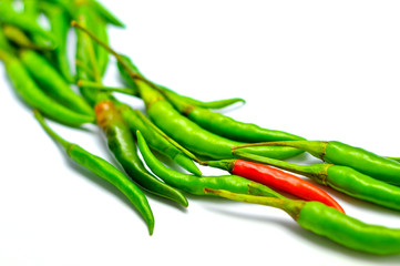 Chillies Red & Green