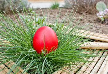 Red Easter egg in the grass
