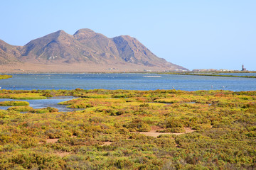 Andalusia, landscape. Salt flats, flamingos, Parque Cabo de Gata