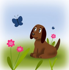 A little puppy looking at a butterfly.