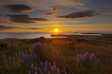 Mitternachtssonne auf Island