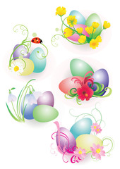 color easter eggs with flowers and ladybird set isolated on whit