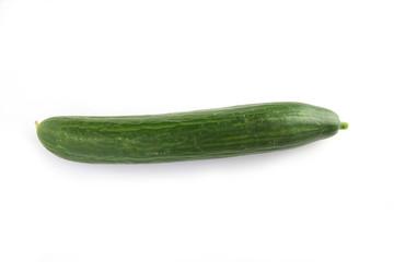 Close-up of cucumber