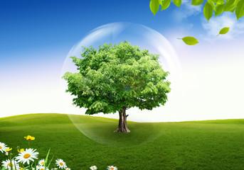 Natural landscape. ecological concept