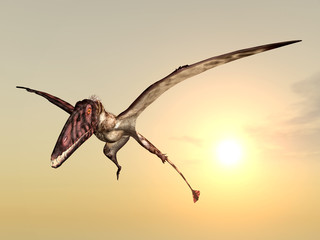 Flying Dinosaur Dimorphodon