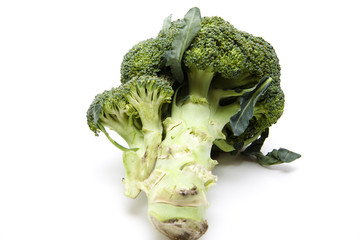 Broccoli frisch