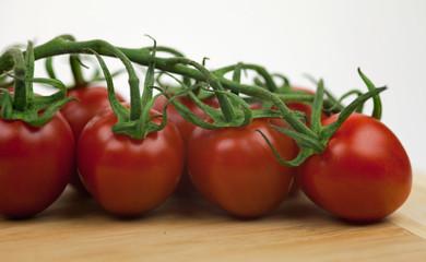 Tomatenstrauch mit Holzbrett I