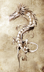 Wall Mural - Sketch of tattoo art, big medieval dragon, fantasy concept
