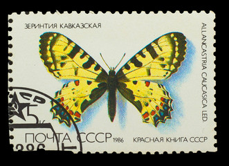 USSR - CIRCA 1986: A stamp printed in USSR, shows Butterfly Alla
