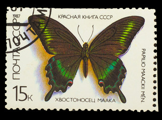 USSR - CIRCA 1987: A Stamp printed in USSR, butterfly  Papilio m