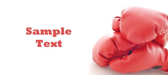 Fototapeta Boxing Gloves with Space for Custom Text on White obraz
