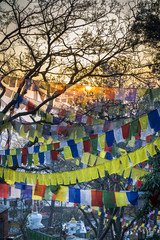 Tibetan prayer flags in Swayambhunath, Kathmandu, Nepal.