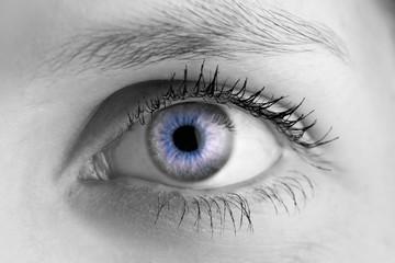 Auge - SW/Blau
