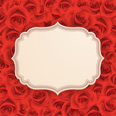 Wall Mural - Greeting card with rose