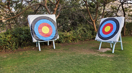 Two diagonal adjascent archery bulls eye targets