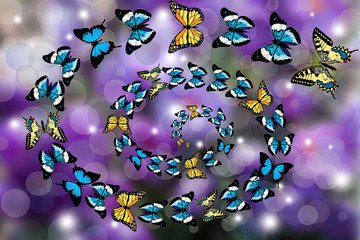 Butterflies swirling