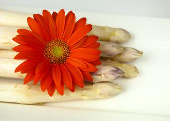 Spargel mit Blume I