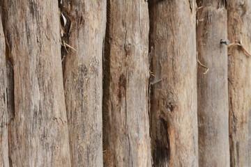 texture rondin de bois