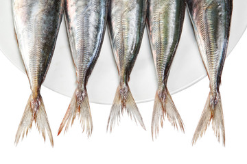 Tails of raw mackerel on a plate. On a white background.
