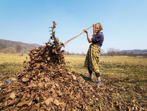 Senior woman with a rake