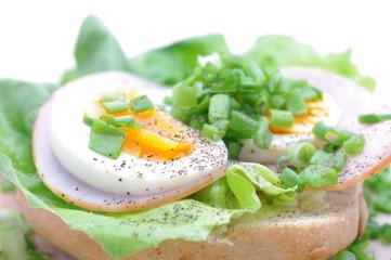 Wędlina szczypiorek jajko sałata