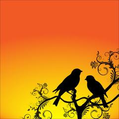 Birds sitting on a branch