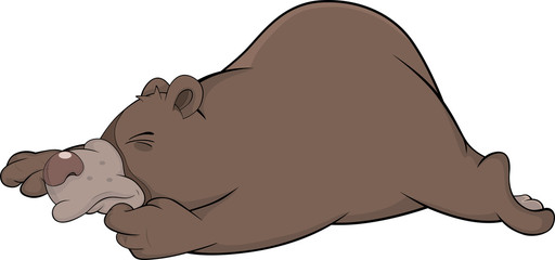 Sleeping brown bear. Cartoon
