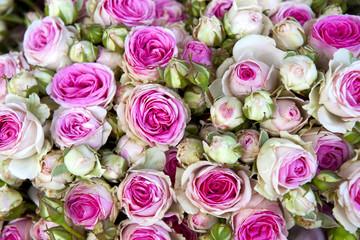 Roses, fleurs, bouquet, amour, mariée, cadeau, fête