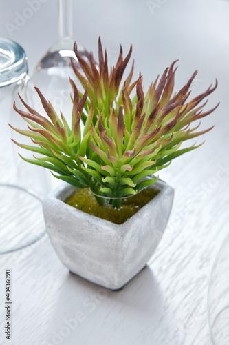d coration de table plante grasse en pot 3 photo libre de droits sur la banque d 39 images. Black Bedroom Furniture Sets. Home Design Ideas