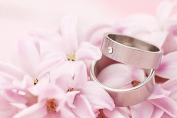 Titanium wedding rings on hyacinth