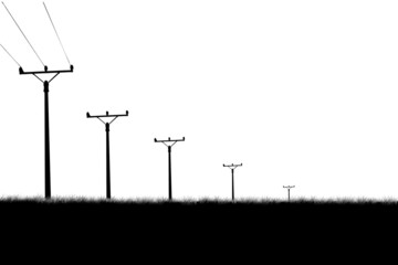 Field with poles