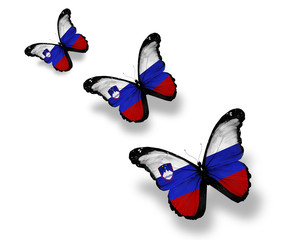 Three Slovenian flag butterflies, isolated on white