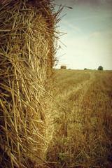 Bales of hay in a field - macro