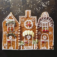 Gingerbread town (decorated gingerbread)