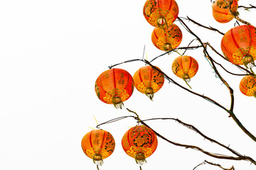 Chinese lantern on a white background