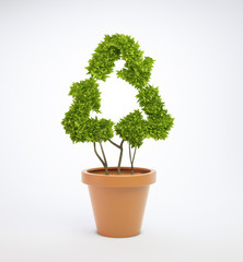 plant in a pot shaped like a recycling symbol
