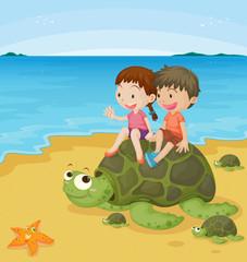 kids on turtles