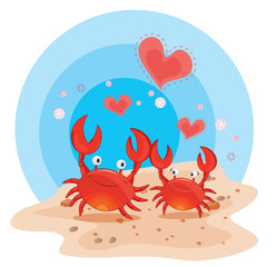 crabs on beach