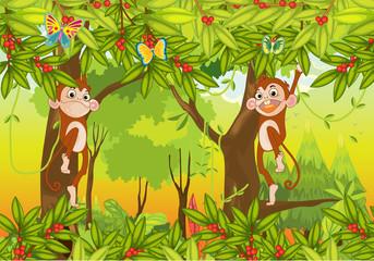 Keuken foto achterwand Vlinders monkeys